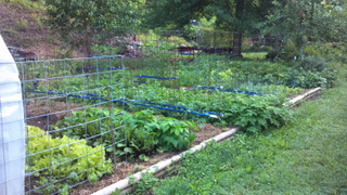 The Fall Garden at Indigo House